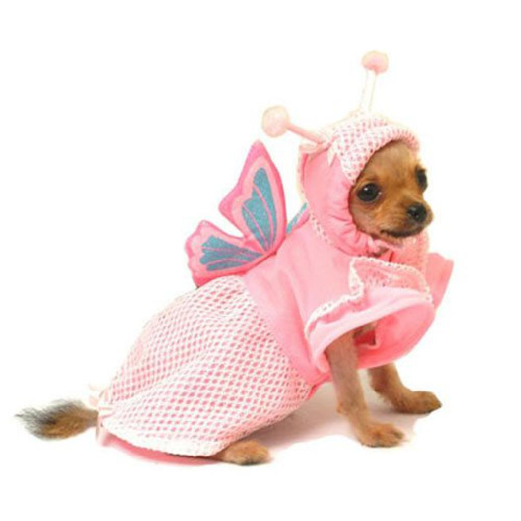 Shop Pretty Girl Dog Costumes for Halloween