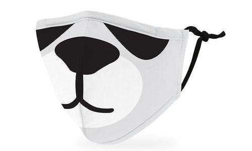 Childs Mask with  Filter insert and Nose Clip