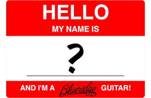 Naming a Blueridge Guitar