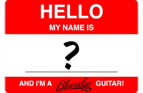 Naming a Blueridge Guitar