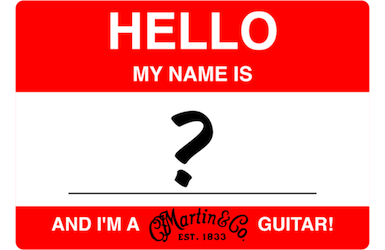 Naming a Martin Guitar