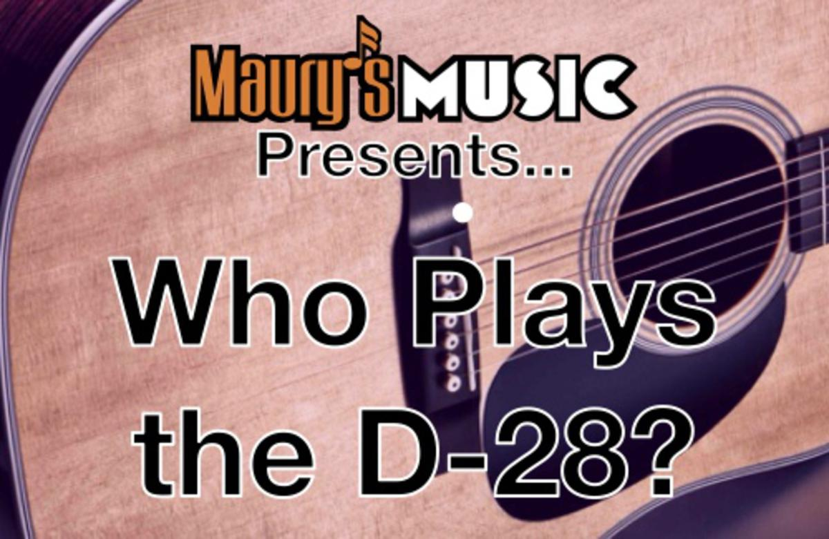 Who Plays the Martin D-28?