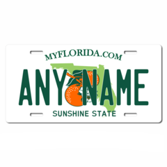 Personalized Florida License Plate for Bicycles, Kid's Bikes, Carts, Cars or Trucks Version 2
