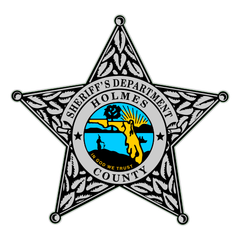 Custom Reflective Sheriff 5 Point Badge Decal