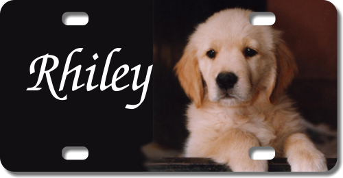 Personalized Puppy License Plate for Bicycles, Kid's Bikes, Carts, Cars or Trucks