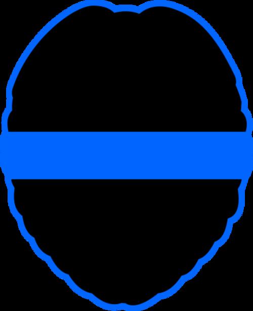 Reflective Blue Line Decal Badge Shape 1