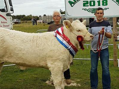 Champion Young Handler Male or Female