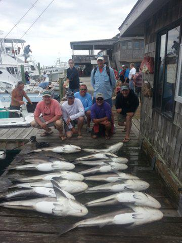 Hatteras Fishing Report 5/18