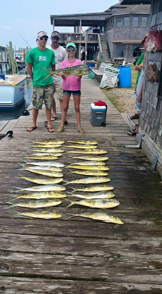Hatteras Fishing Report 6/25/2015