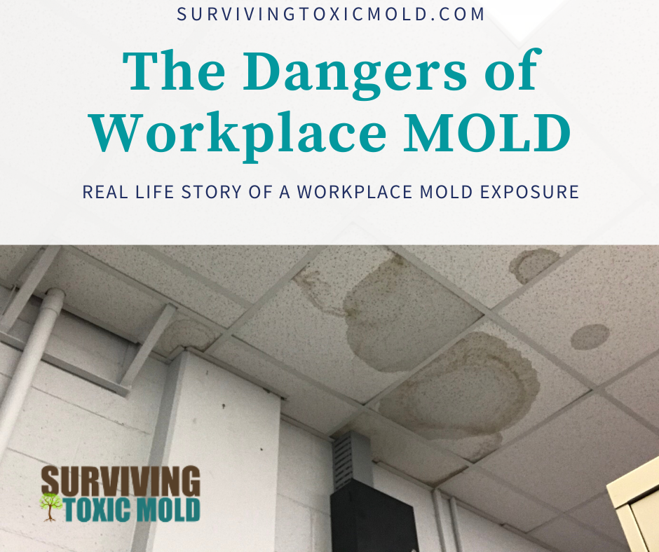 Beth, Simsonvillle - SC (Workplace Mold)