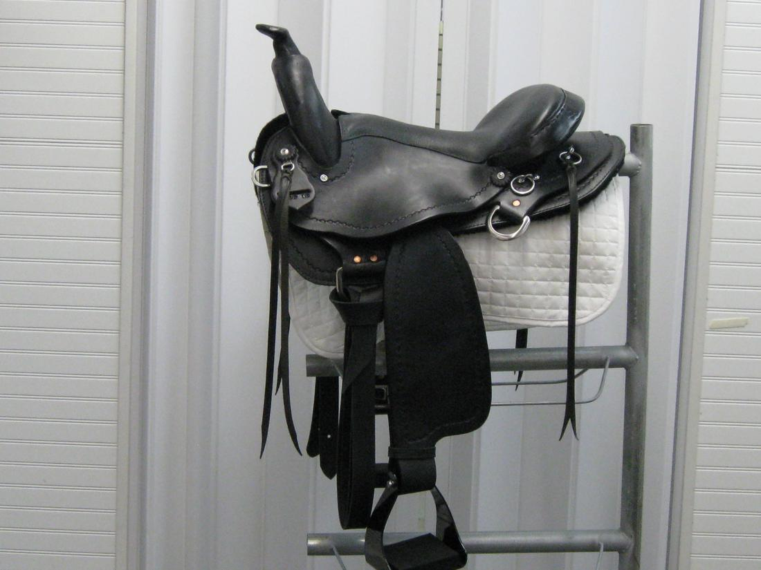 TPS Lite Rider with Horn 16