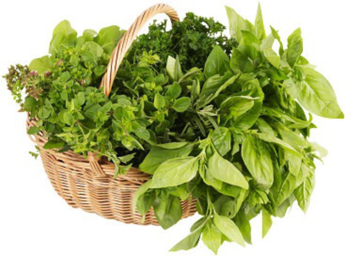 Fresh Herbs for Fresh Summer Salads