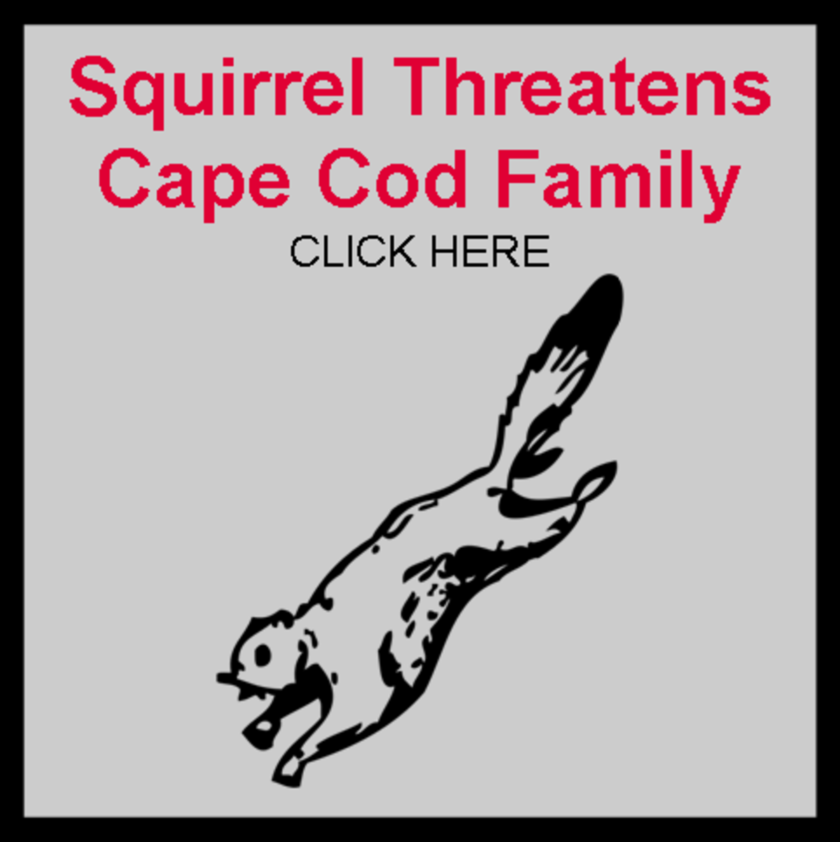 Squirrel Threatens Cape Cod Family