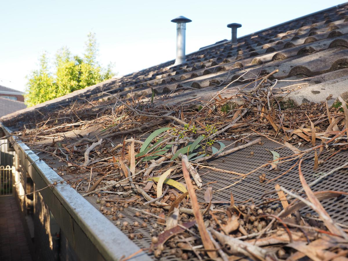 Why Repairing Your Gutters is Crucial to Home Health