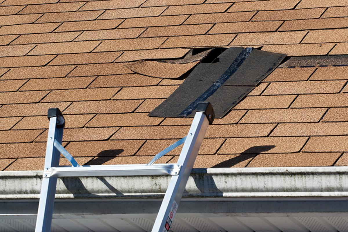 Why Summer is the Perfect Time For a Roof Inspection