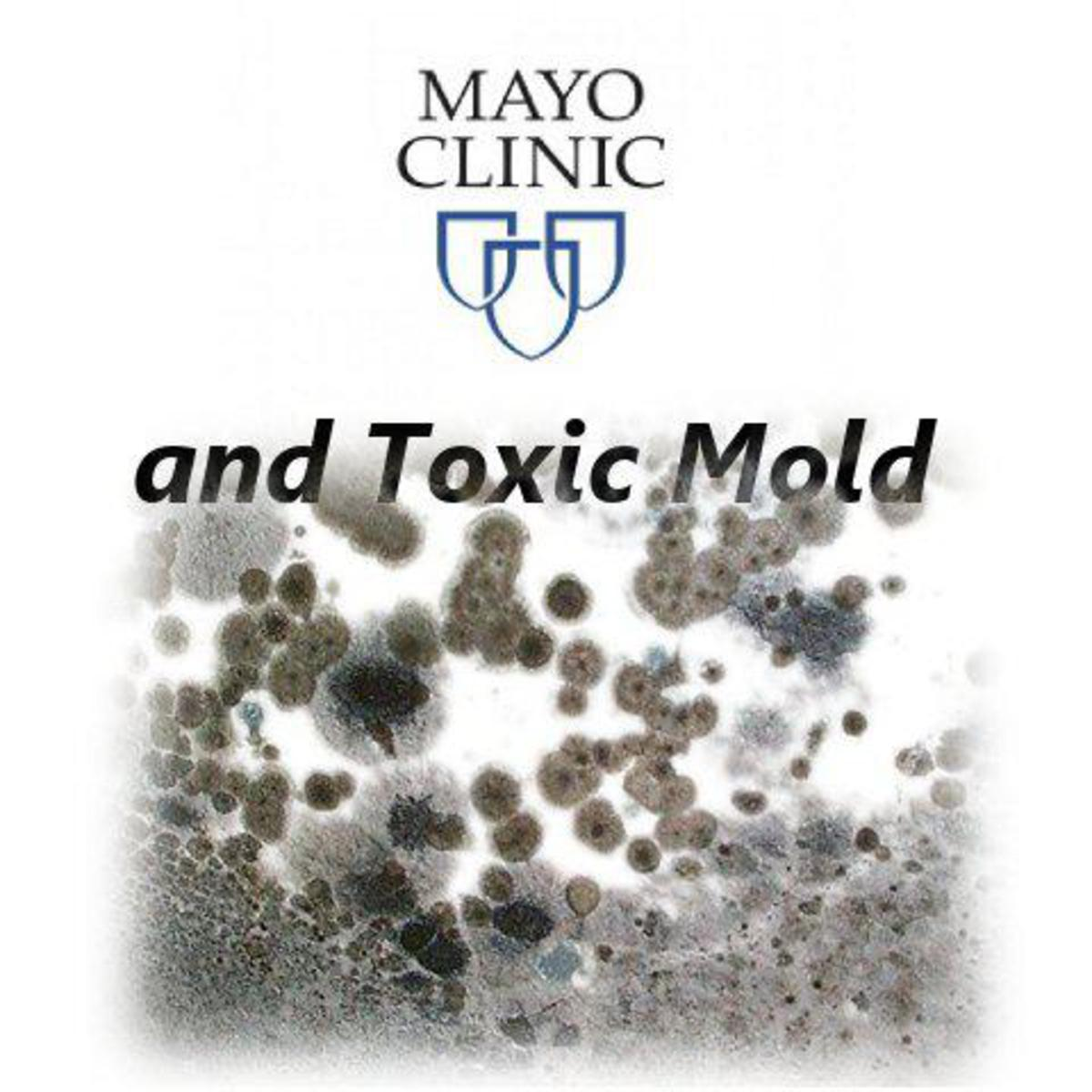 Mayo Clinic to finally recognize Mold as a Toxicity and not just an allergy!!