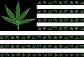 USCIS - Legal Pot Smoking and Good Moral Character GMC