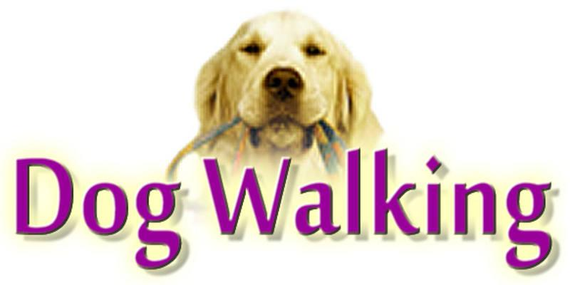 Dog Walking and Dog Etiquette