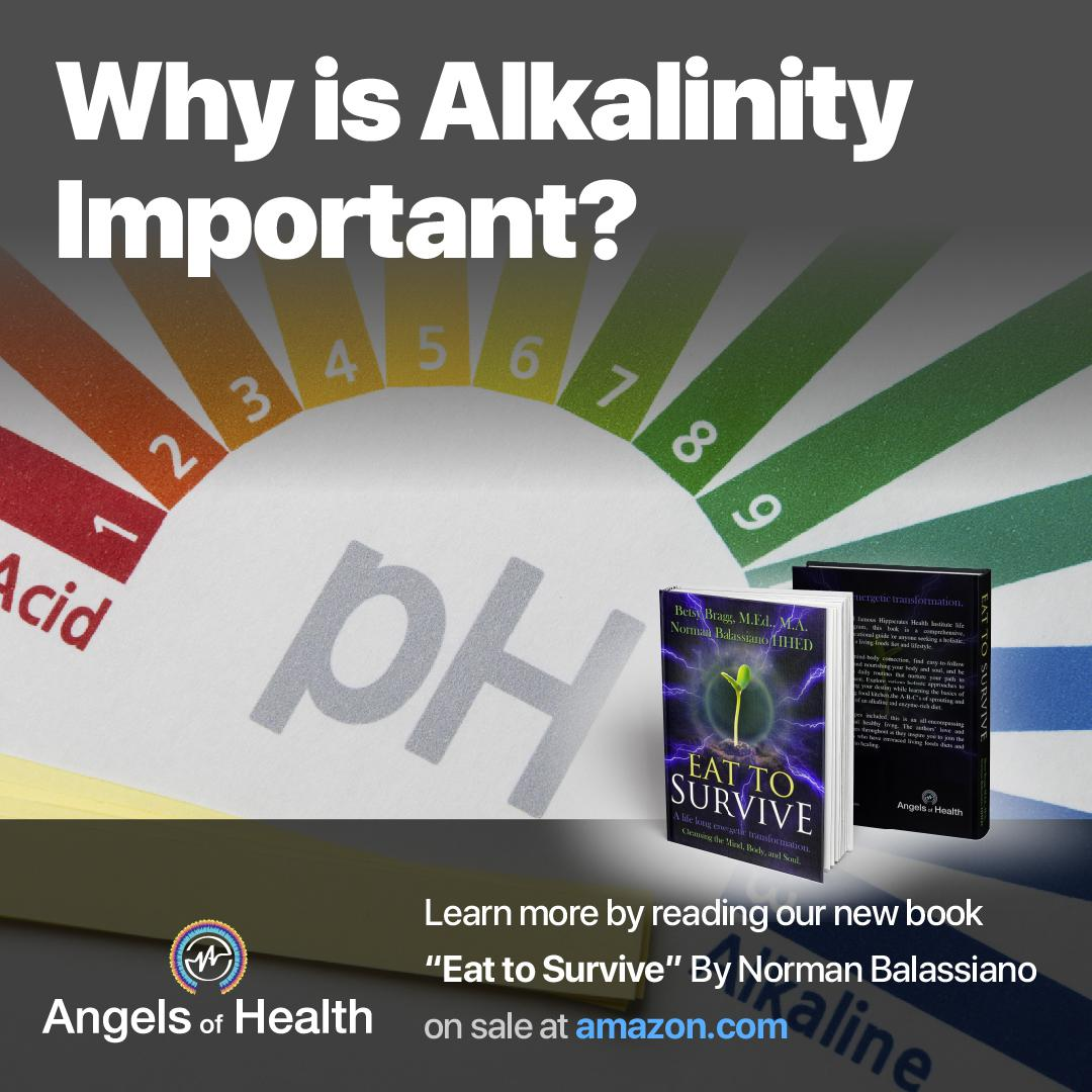 Why is alkalinity important?