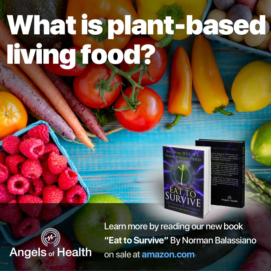 What is plant-based living food?