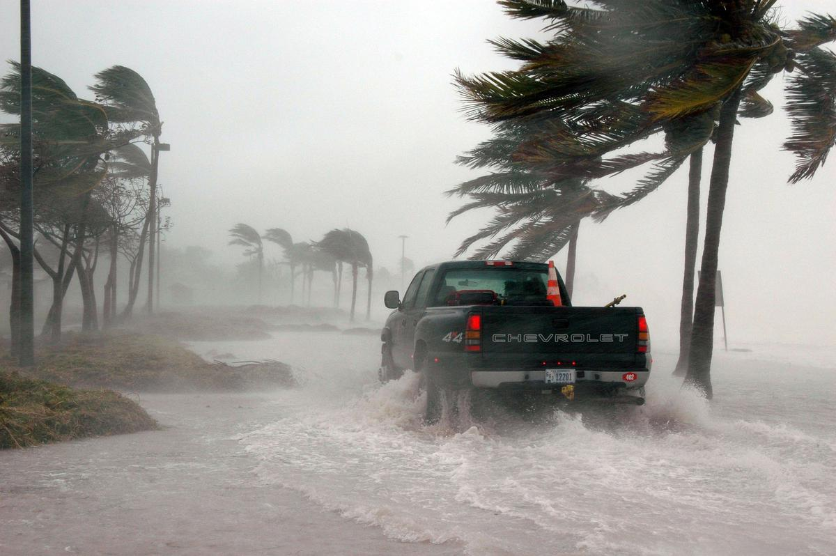 PROTECTING YOUR BUSINESS VEHICLES FROM HURRICANE DAMAGE