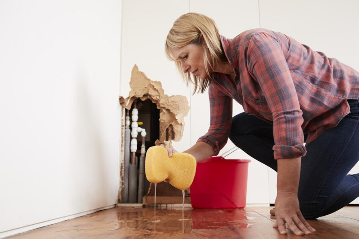 What Should You Do When You Find Water Damage?