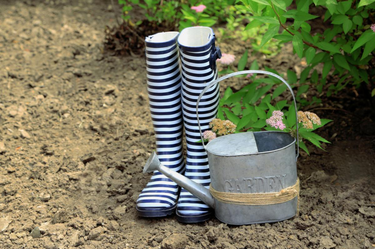 Landscaping Tips and Ideas to Conserve Water